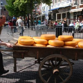 Alkmaar Cheese Market - Alkmaar, Holland