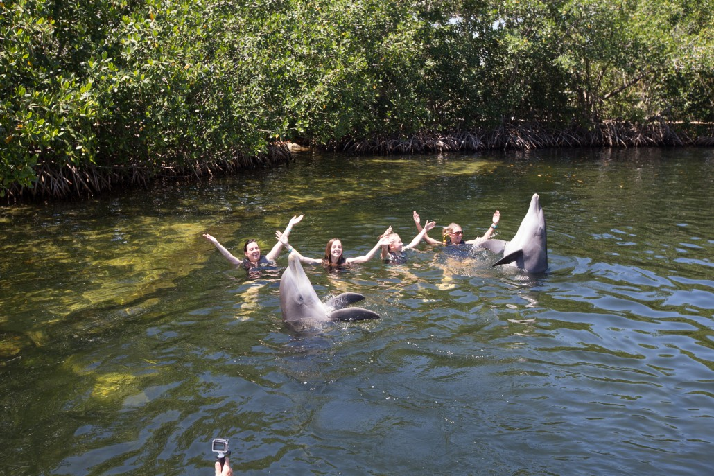 Worldstrides Florida Keys, FloridaDolphin Swim
