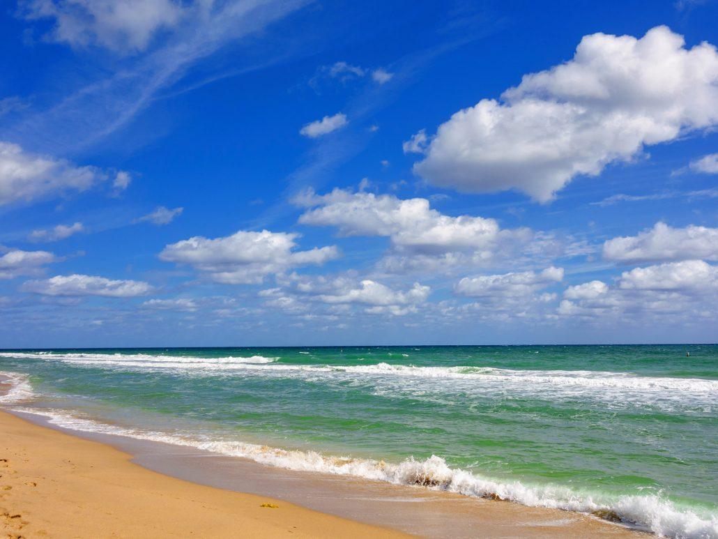 Lido Beach - Sarasota, Florida Habitat: H2O