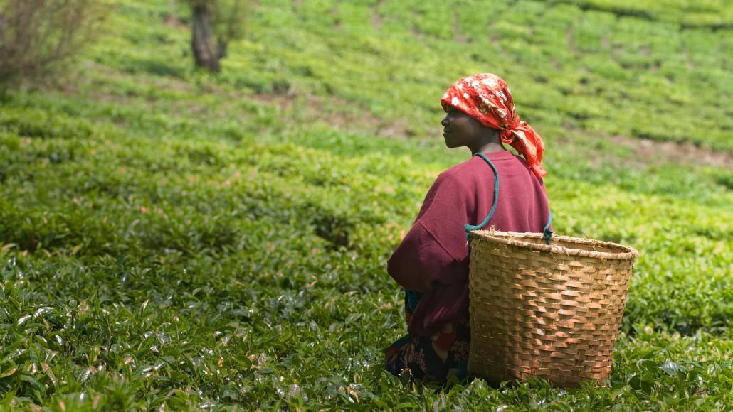 Spotlight on Rwanda