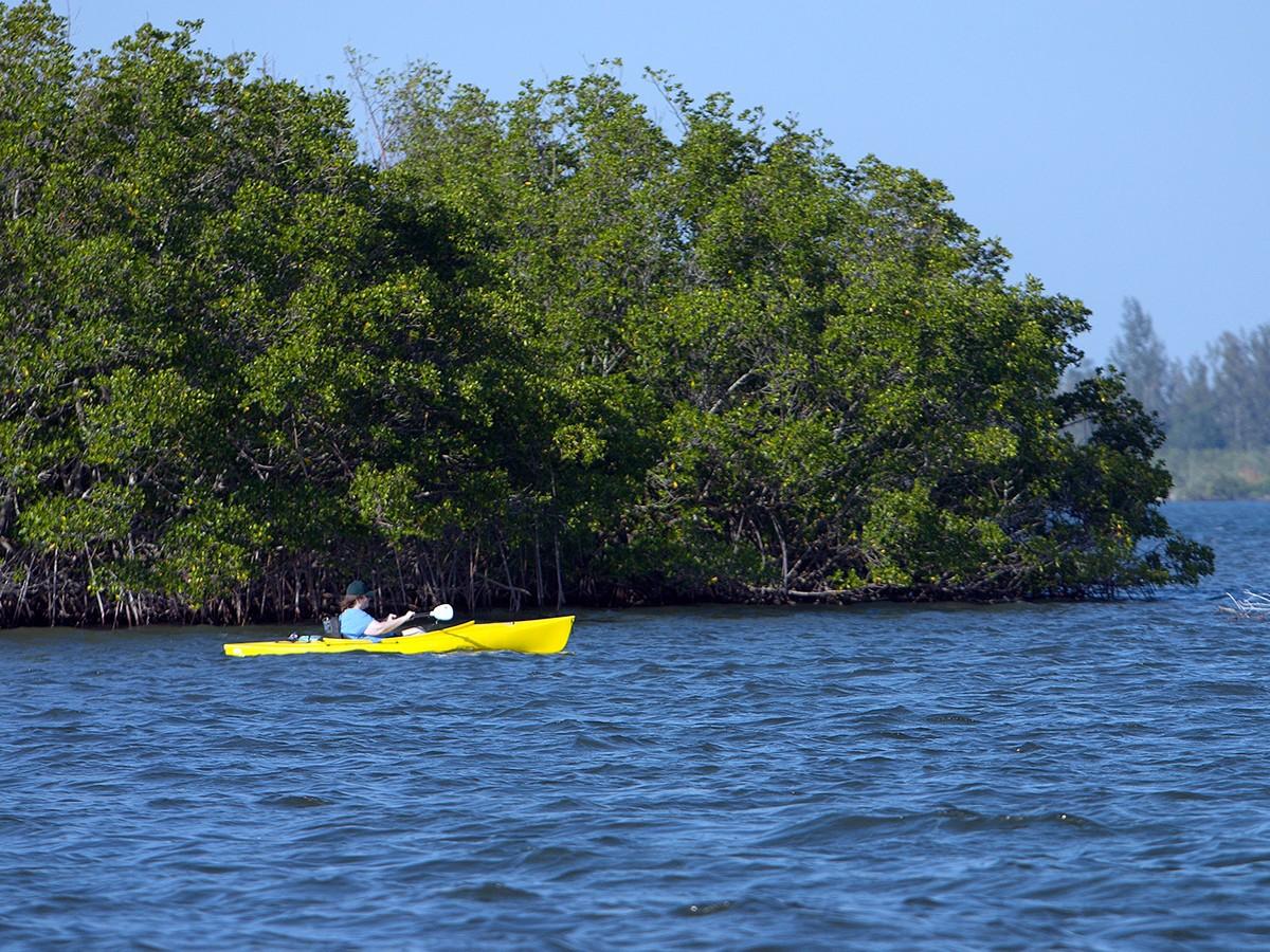 Splash into Science Garden Cove Kayak Tour - Key Largo, Florida