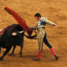 Bull Fighting in Spain