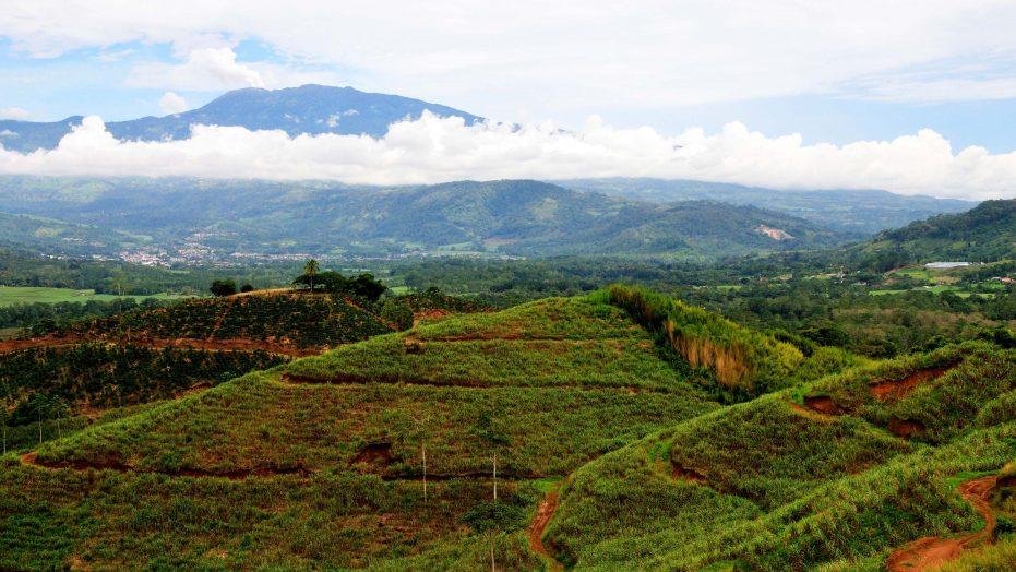 Costa Rica Farmland