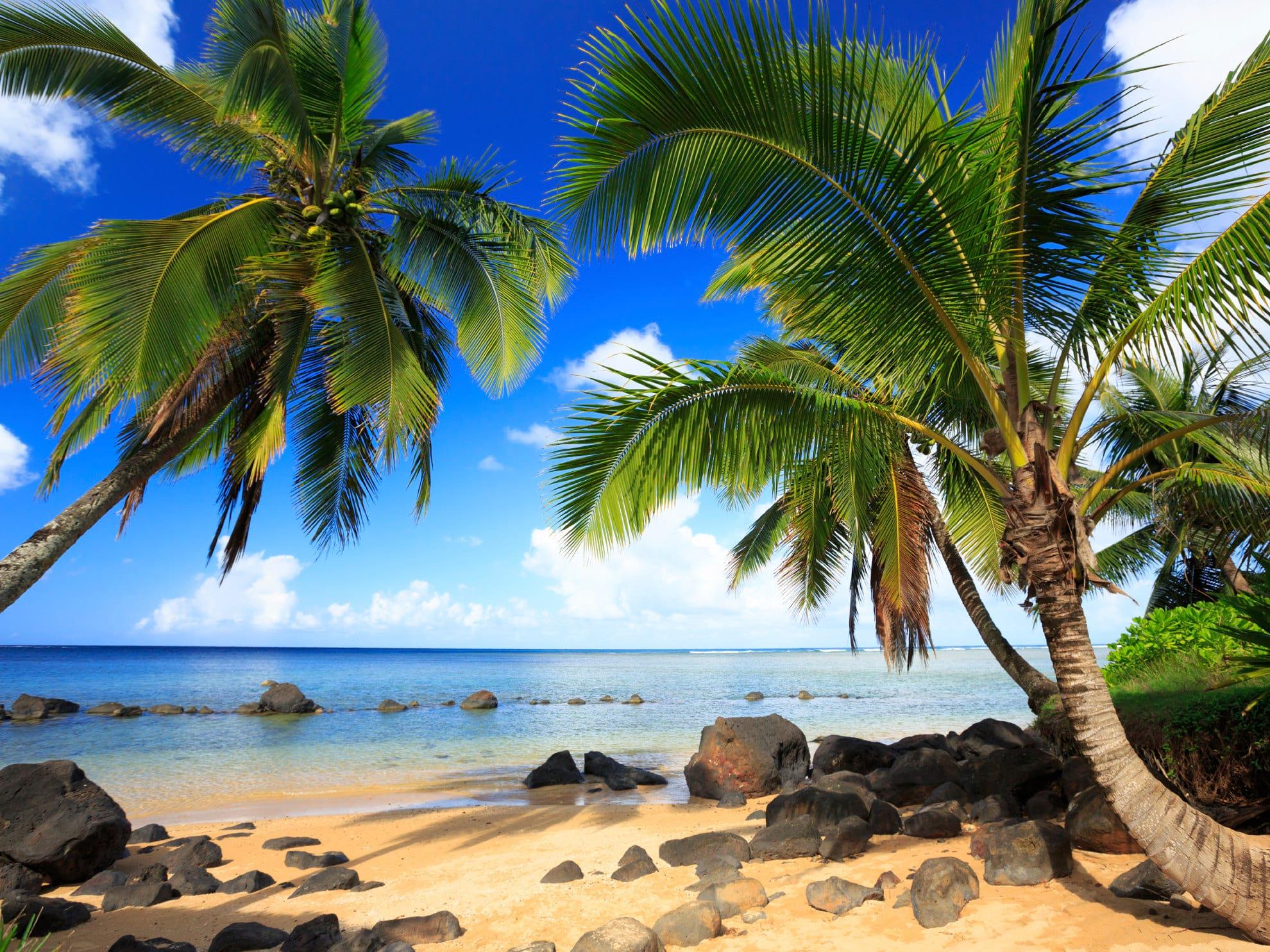 Kealakekua Bay Hawaii