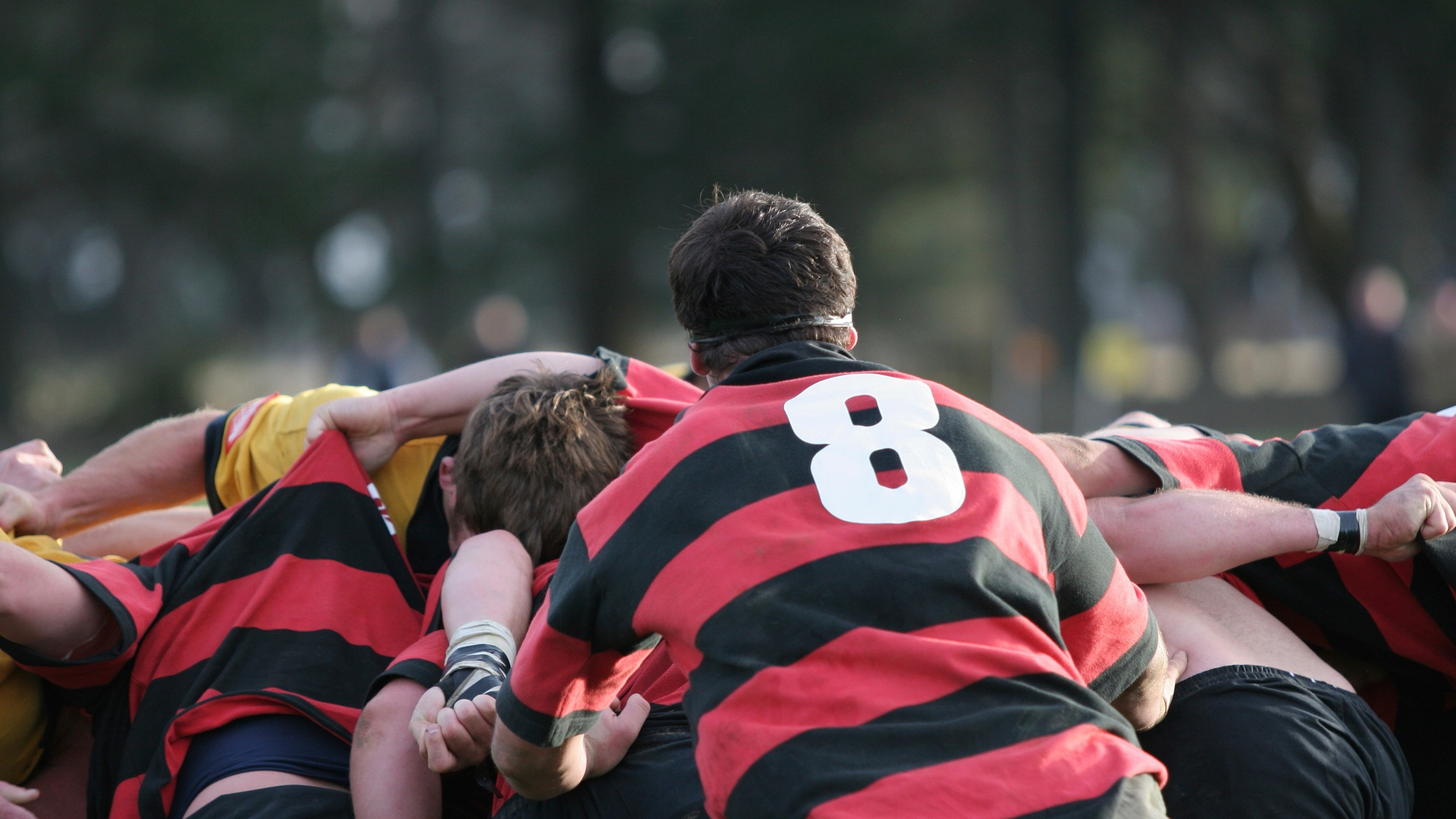 England Rugby Tour - WorldStrides Educational Travel