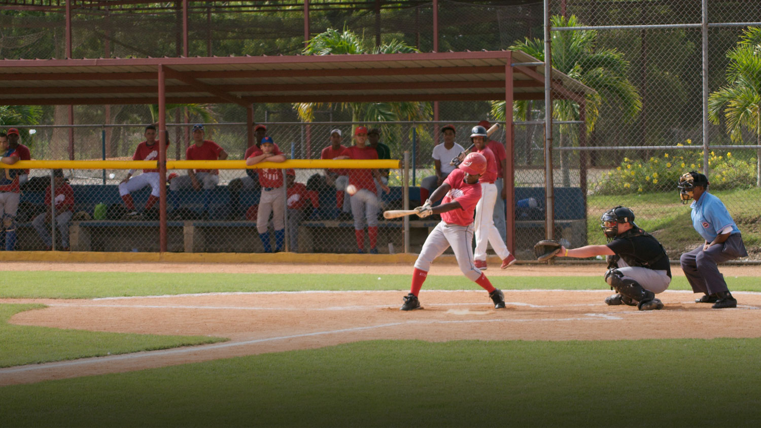Play Baseball in the Dominican Republic
