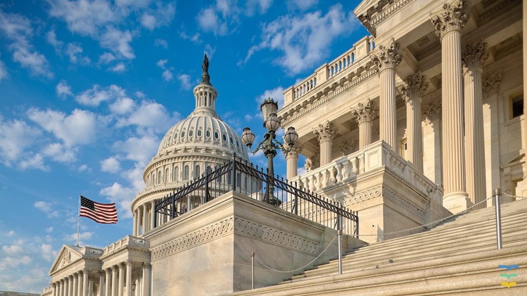 Washington D.C Virtual Background