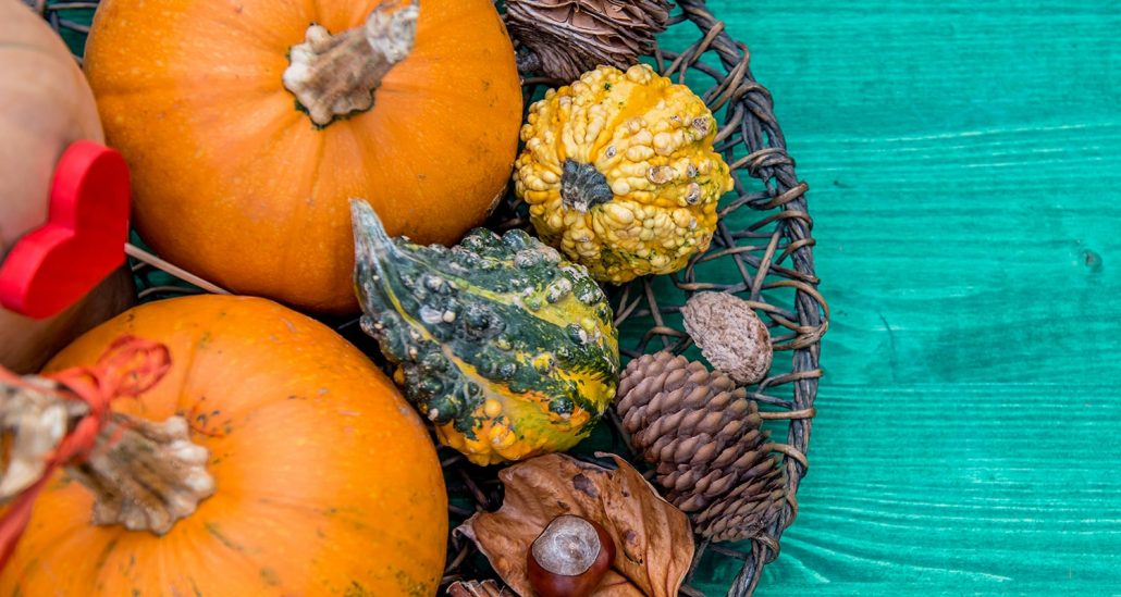 Fall Flavors of Food
