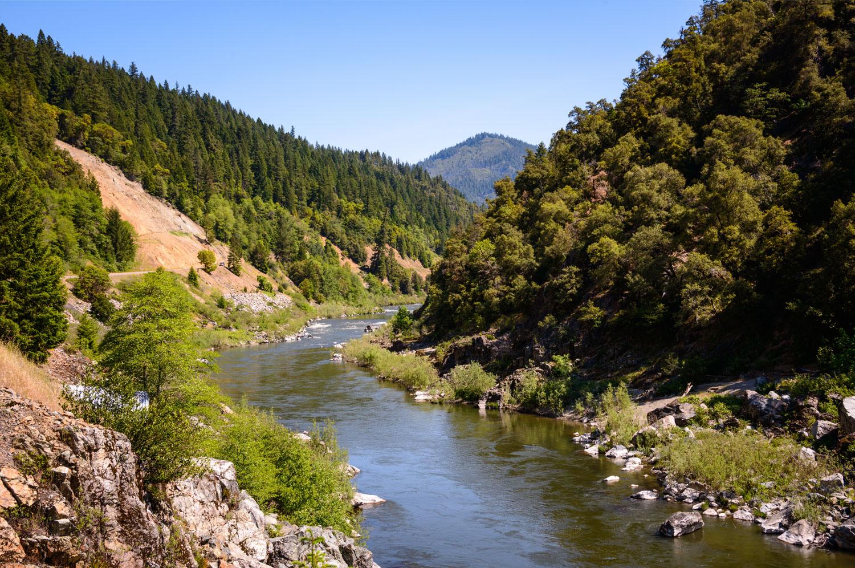 Ancient-Forest_Klamath_California